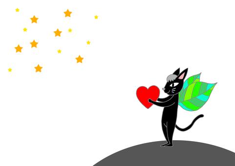 밤하늘과 검은 고양이
