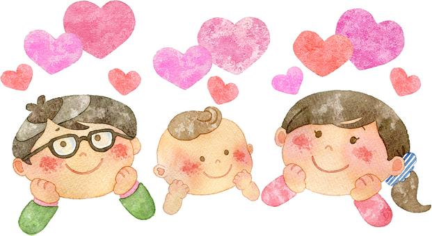 Chestnut family