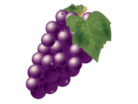 Grape 01