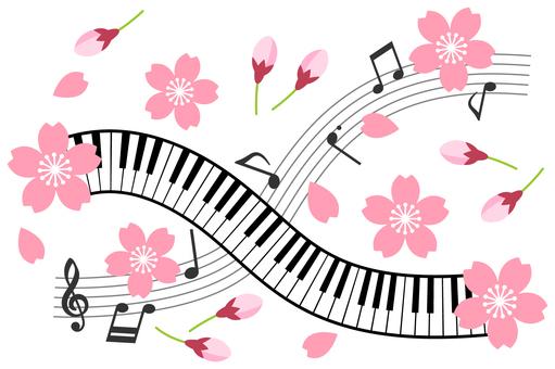 Sakura's music image