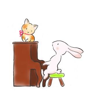 Piano rabbit 36