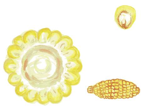 Corn assortment