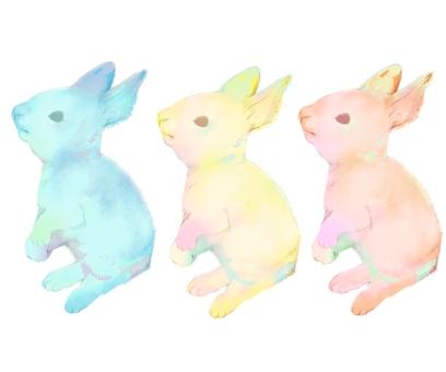 수채화 풍의 토끼