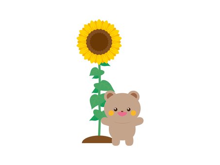 Sunflower and bear