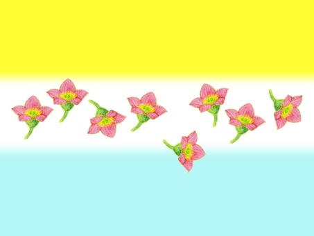 Flower play