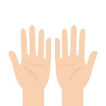 손바닥 (일반)