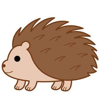 Animal illustration-Loads