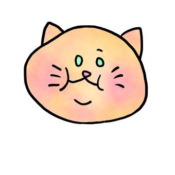 胖胖的Neko -chan