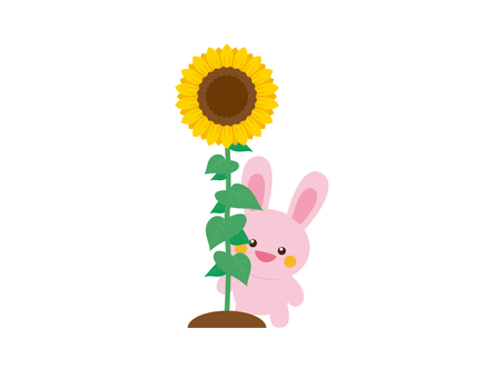 Sunflowers and rabbits