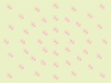 杜鵑花背景1