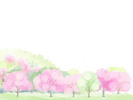 봄 풍경 9
