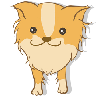 Chihuahua smiling