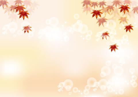Autumn leaves 54