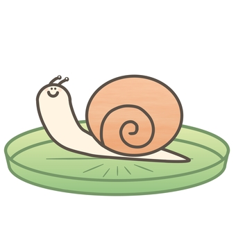 Snail on the lotus