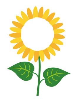 Sunflower frame _ wheel