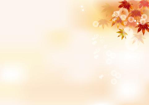 Autumn leaves 163