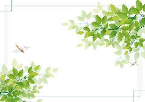 프레임 나뭇잎 잠자리 2