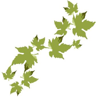 Leaf belt
