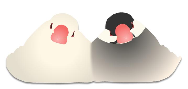 Good friend birds illustration