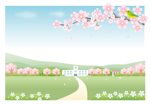 Cherry blossom scenery and school background