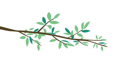 Leaf branches