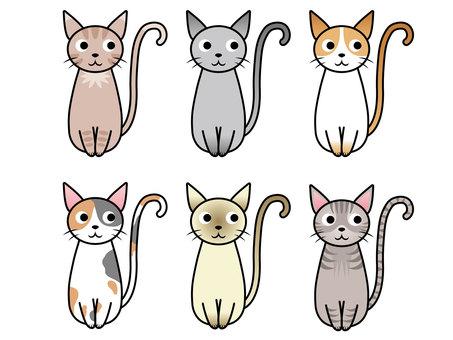 猫/バリエーション