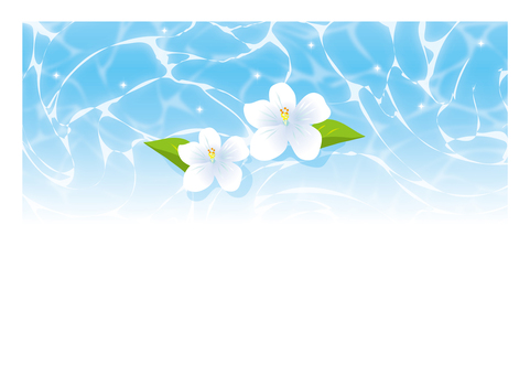 White flowers on the pool surface
