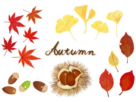 秋の小物セット