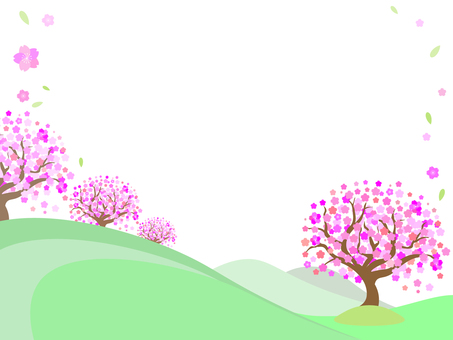 Landscape of hill with cherry blossom trees