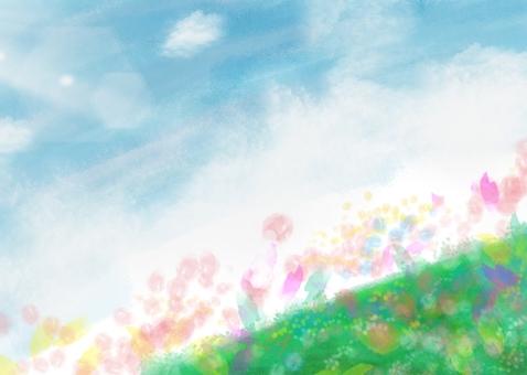 Fluffy field
