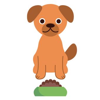 Pet food and dog image