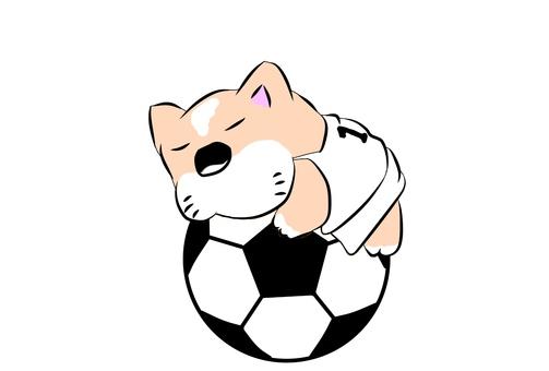 Soccer ball dog chillin