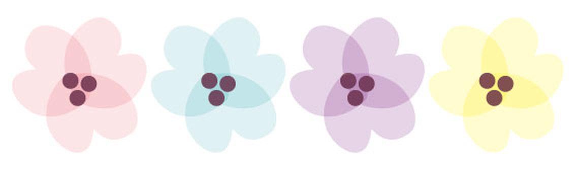 Natural Flower Set