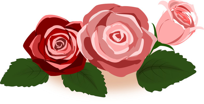 Autumn-colored rose 02