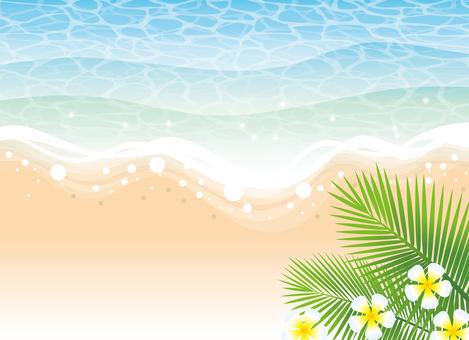海滩的背景