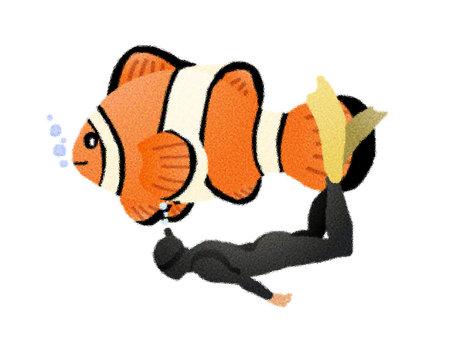 Anemone fish 7