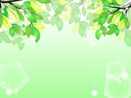 Frame material * fresh green