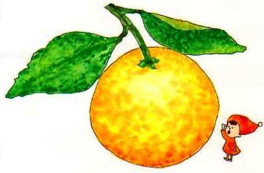 Citrus: Kiyomi