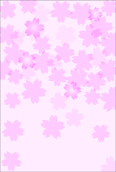 It is an image of cherry blossoms.