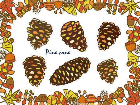 Pine cone color