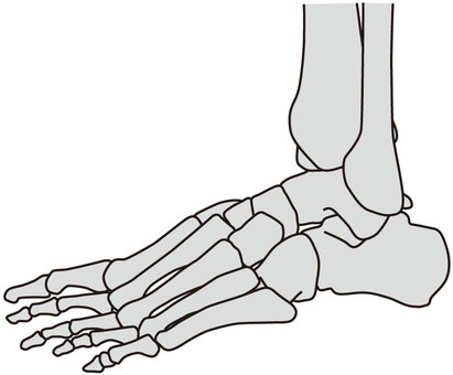 Foot joints
