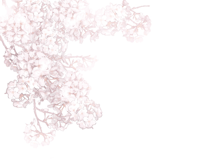 Spring cherry frame