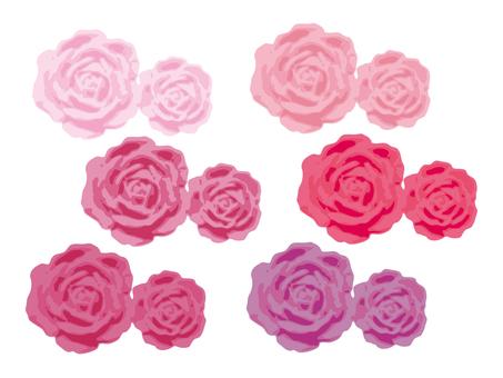 Pink twin rose