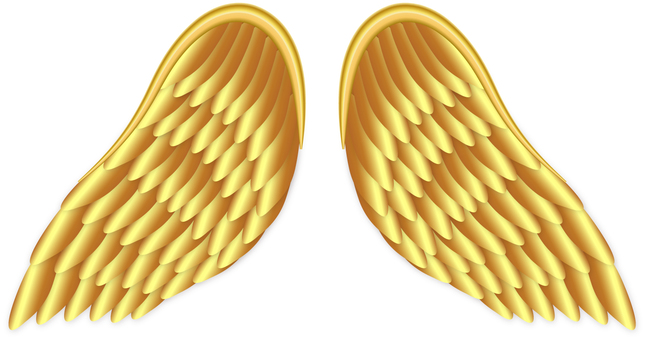 Golden Wing / Golden Wing