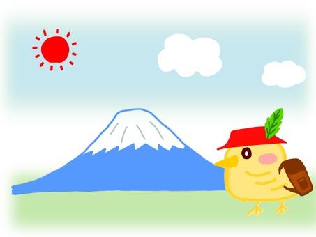 Climb Chick Mt. Fuji