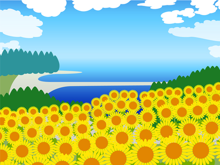 Summer view sunflower, sea, blue sky background