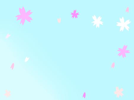 Cherry blossom petal background