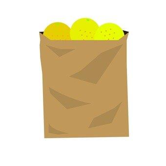 Paper bag 33