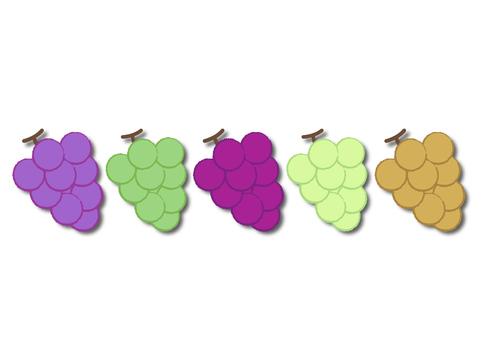 grape_ grapes 4