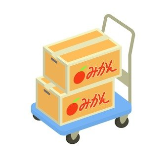 Mandarin orange box transport